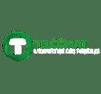 Logo Telcomat